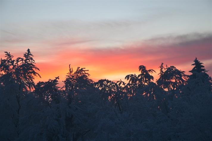 TBT SNOW LJUBLJANA SLOVENIA